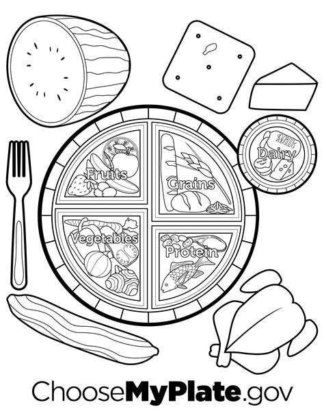 myplate coloring page nutritioneducationstorecom