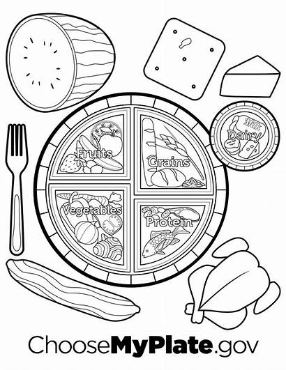 Coloring Plate Pages Printable Myplate Nutrition Worksheets