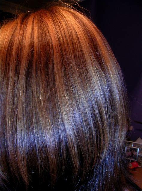 brown hair color  lowlights hair colors idea