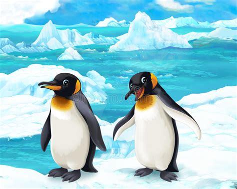Penguins Stock