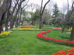 Tulpen Im Garten : tulpen garten foto bild europe turkey istanbul ~ A.2002-acura-tl-radio.info Haus und Dekorationen