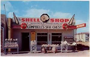 Shell Online Shop : port isabel 39 s classic shell shops south padre tv ~ Orissabook.com Haus und Dekorationen