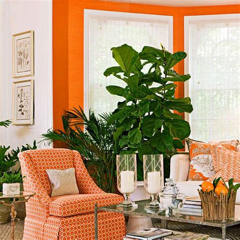 decorating  orange  instant pick   traditional home