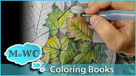 coloring with watercolor in adult coloring books youtube