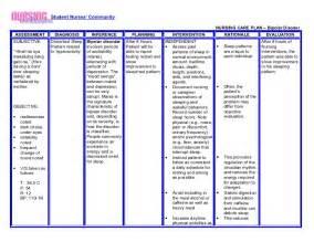 Bipolar Nursing Care Plan Example