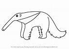 Learn How to Draw a Cartoon Anteater (Cartoon Animals ...