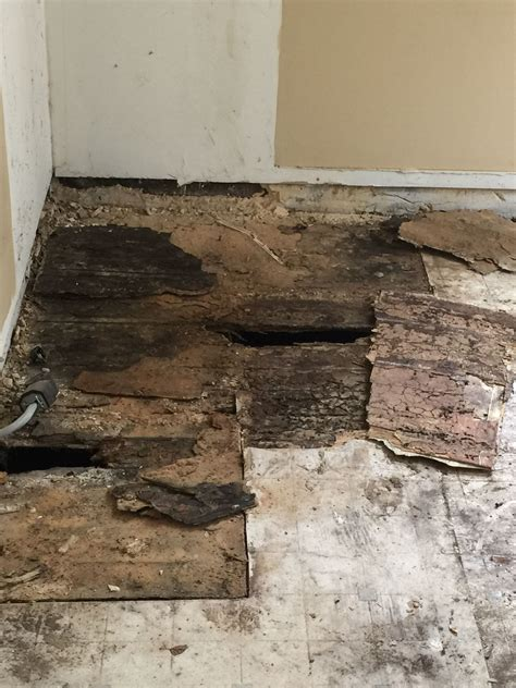 Repair Bathroom Floor by We Pulled Up The Subfloor And Guess What There Are Two