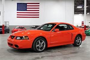 2004 Ford Mustang SVT Cobra for sale #105941 | MCG