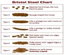 9 Best Images Of Bowel Movement Size Chart  Stool Chart