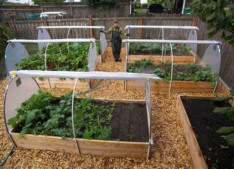 ideas for container vegetable gardening interesting