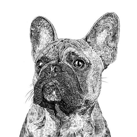 french bulldog print  ros shiers notonthehighstreetcom