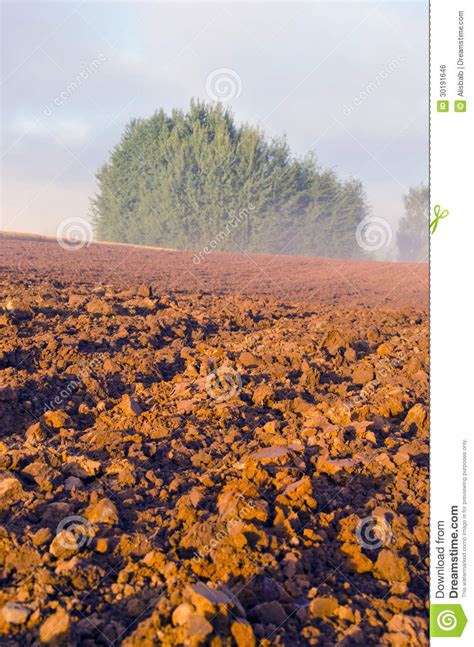 Plowed Farm Field And Morning Mist Stock Photo Image