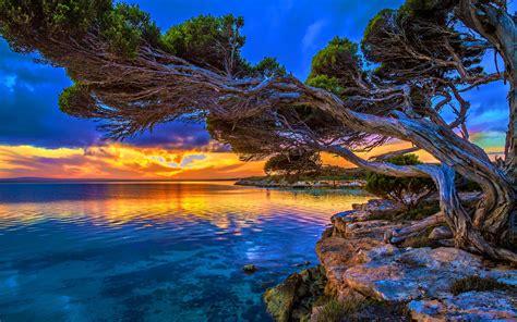coastal sunset  park lakeshore paradise hd wallpaper