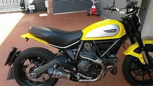Ducati Scrambler 800 : ducati scrambler 800 tappezzeria italia seat cover custom made new ebay ~ Medecine-chirurgie-esthetiques.com Avis de Voitures