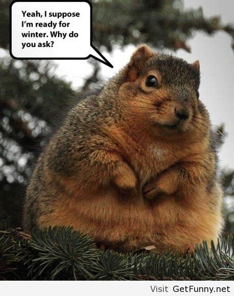Funny Winter Memes - funny quotes about winter weather quotesgram