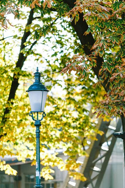 Der Garten Wien Hauptallee by Wien Impressionen Der Prater Pomponetti