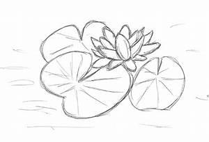 Miniteich Pflanzen Set : seerosen pflanzen anleitung seerosen von kerstin birk pflanzen blumen natur wasser malerei ~ Buech-reservation.com Haus und Dekorationen
