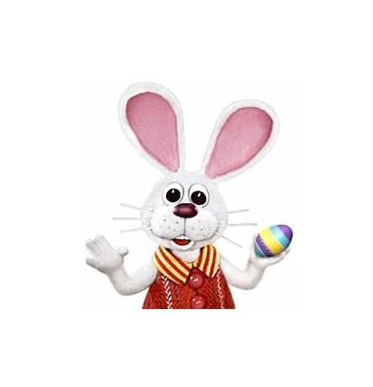 Cottontail Peter Comes Easter Dvd Bunny Tv