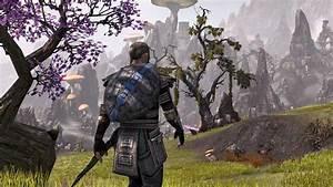 The Elder Scrolls Online39s 180 Update Fixes More Quest