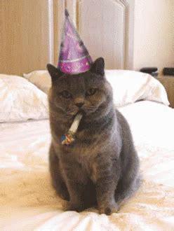 Happy Birthday Meme Gif - birthday gifs tenor
