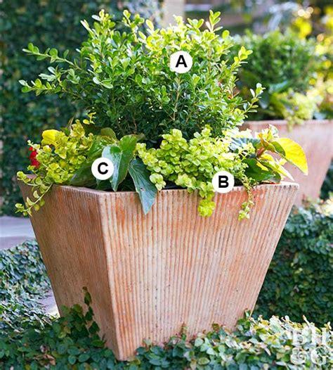 Super Easy Shade Container Garden