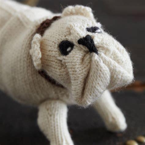 attention chien gentil tricot  cabot de   show