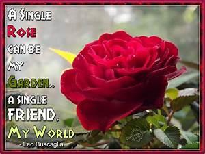 Rose Garden Quotes. QuotesGram