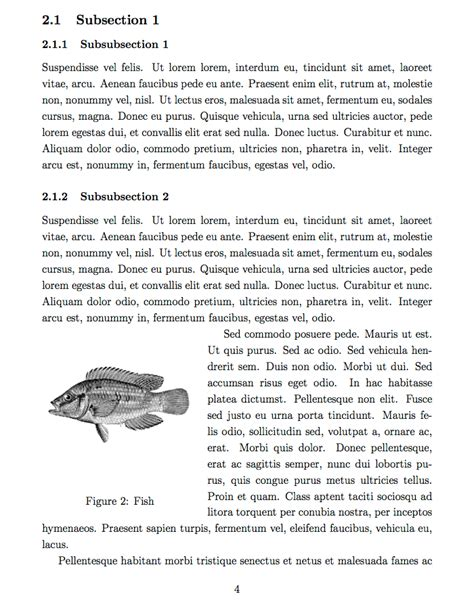 latex templates simple sectioned essay