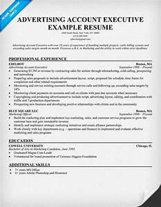Sample resume format accounts executive sample resume for Account executive resume