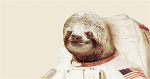 Astronaut Sloth, a cool t-shirt by BakusPT on Threadless