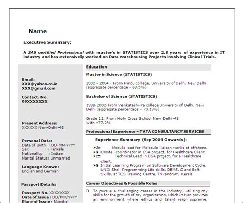 resume sle for sas programmer sas programmer developer free resume template