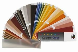 Caparol Farbe Im Baumarkt : caparolcolor caparol caparol ~ A.2002-acura-tl-radio.info Haus und Dekorationen