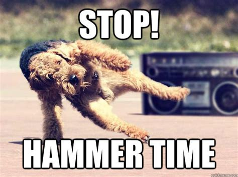 stop hammer time   touch    meme