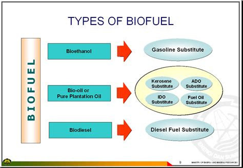 East Asia Summit / Energy Cooperation Task Force|bio-fuel