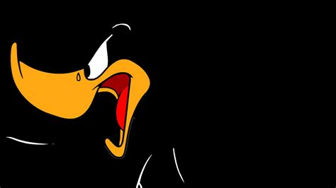 Animated Duck Wallpaper - daffy duck hd wallpapers