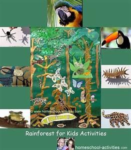 Fun Rainforest Kids Crafts And Ideas  Make A Bromeliad