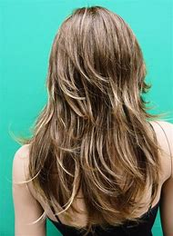 Dark Ash Blonde Hair Color with Highlights