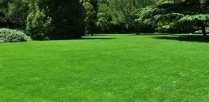Ab Wann Rasen Vertikutieren : garten rasen ~ Lizthompson.info Haus und Dekorationen