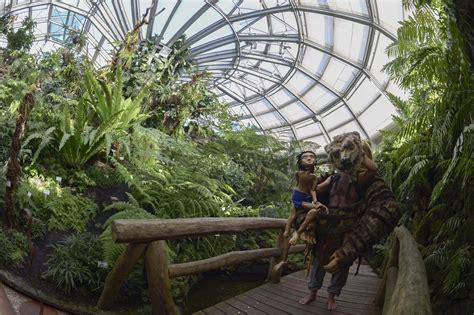 Botanischer Garten Berlin Mogli by Auf Theater Safari Mit Mogli Und Balu Cus Leben
