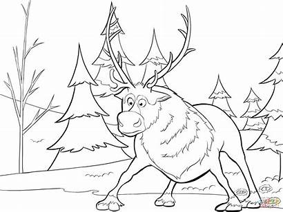 Colorear Frozen Sven Dibujos Coloring Imprimir
