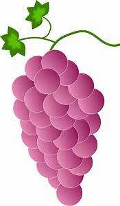 Clipart - pink grapes