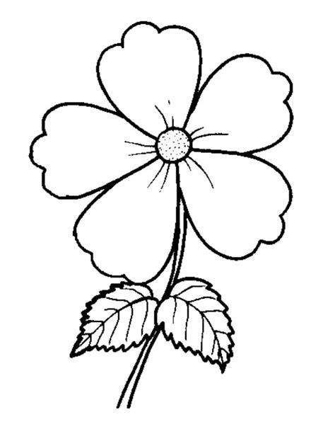 gambar bunga hitam putih