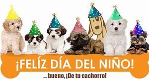 Feliz Día del Niño y del Cachorro Blog de Pancho DoggieDoor com mx