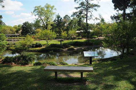 hermann park s japanese garden serves as city oasis