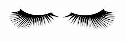 Eyelash Clipart Svg Lashes Eyelashes Animated Cartoon