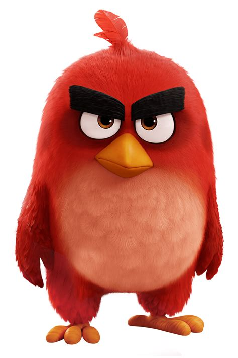 Angry Bid Angry Birds Angry Birds Wiki Fandom Powered By