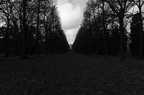 Black Picture by غابة مظلمة ليلة كئيبة Neazki