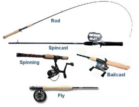 history tells    choose rods  reels