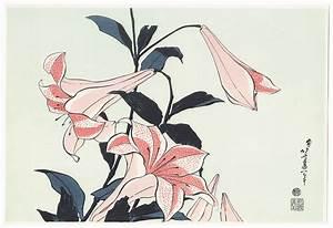 Fuji Arts Japanese Prints - Lilies By Hokusai  1760