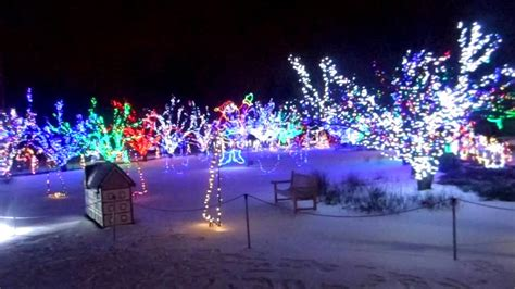 christmas lights coulon park park lights decoratingspecial